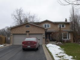 4 BEDROOM BEAUTY BACKING FOREST IN FALGARWOOD!